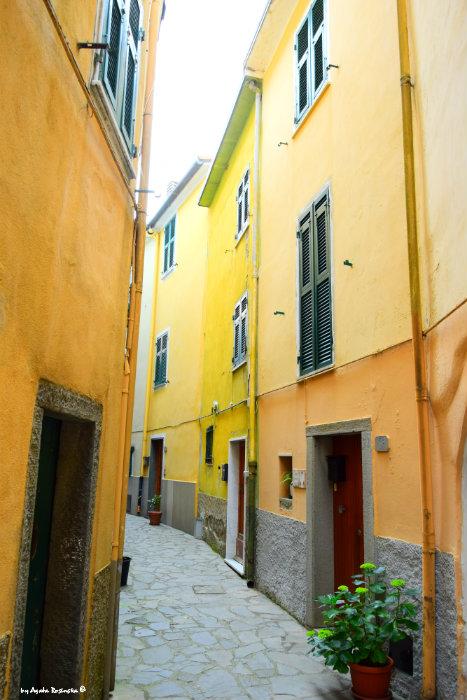 street in Volastra