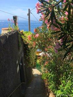 visiting Punta Chiappa in Liguria