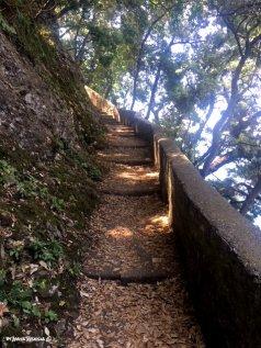 climbing to Punta Chiappa