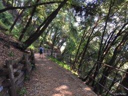 trail to Punta Chiappa