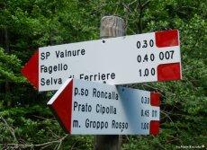trails Parco Regionale dell'Aveto