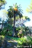 Villa Durazzo Centurione Park