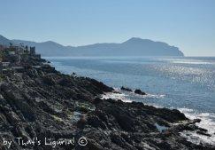 shore of Genova Nervi