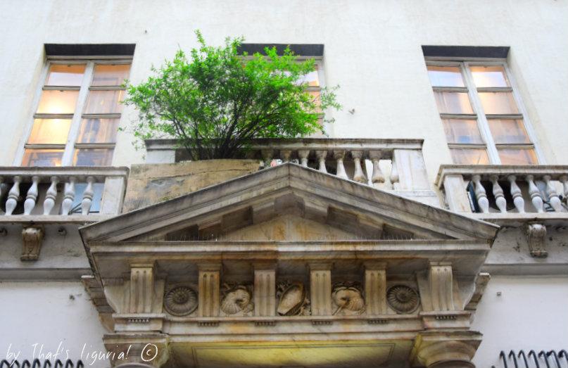 Przepowiednia pałacu drzewa granatowego :)