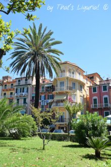 palm in Lerici
