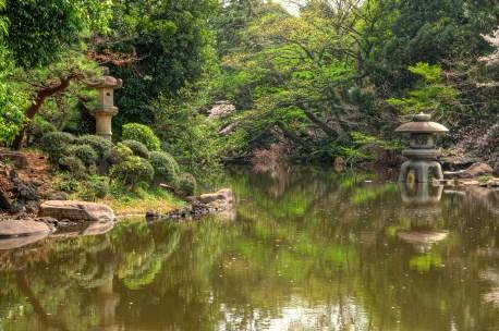 Nice lake in Tokyo city park