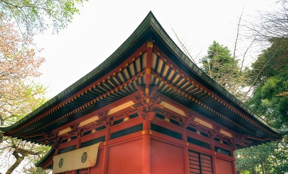 Beautiful Wooden Roof
