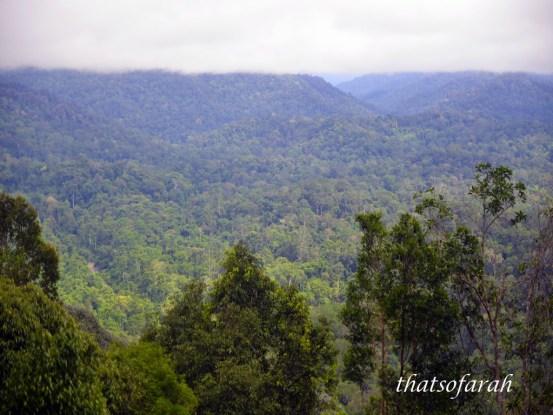 Taman Negara Pahang Bukit Teresek