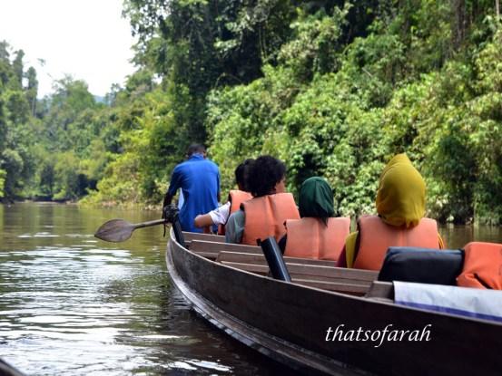 Sungai Tahan Boat Cruise