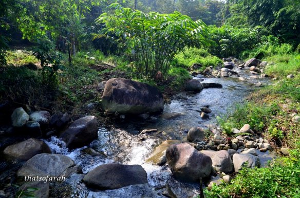 Sungai Lepok