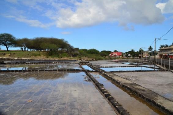 Salt pans Tamarin Mauritius