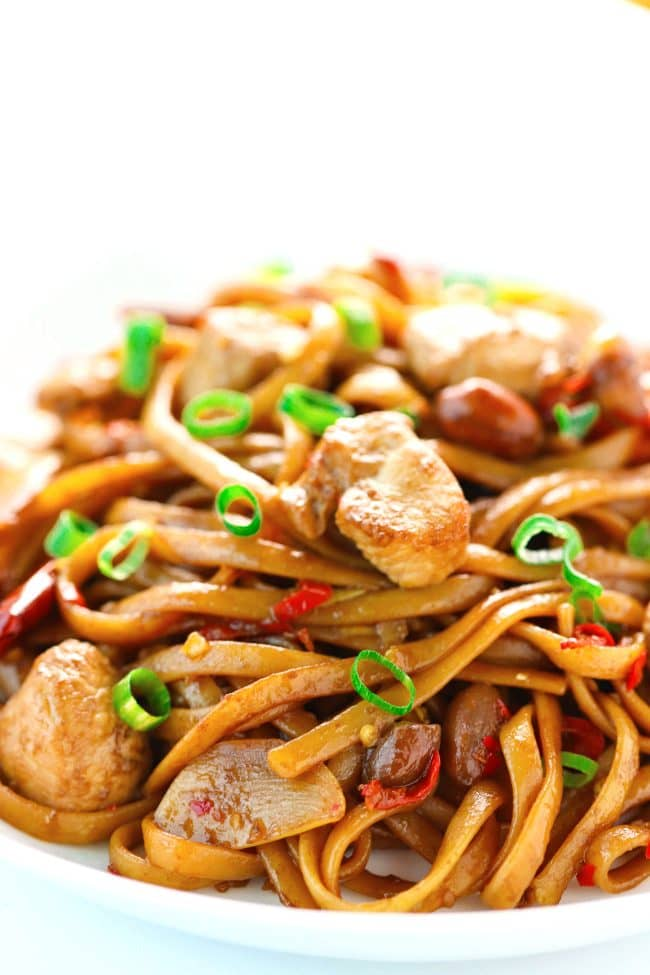 Spicy Asian chicken noodles with peanuts, ginger, garlic, and dried red chilies on plates