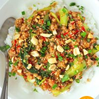 Ground pork and bok choy peanut sauce stir-fry on rice in plate with spoon and topped with sesame seeds, chopped peanuts, coriander, and spring onion.