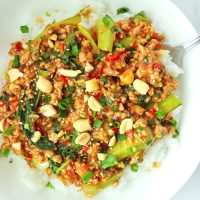 Ground pork peanut sauce and bok choy stir-fry on plate with rice and spoon, and topped with sesame seeds, chopped peanuts, coriander, and spring onion.
