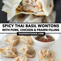 """Close-up of bitten into wonton in a bowl, and front view of pan-fried wontons on a plate. Text overlay """"Spicy Thai Basil Wontons with Pork, Chicken & Prawn Filling"""" and """"thatspicychick.com""""."""