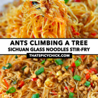 "Chopsticks holding up noodles and pork and close-up of stir-fried pork noodles. Text overlay ""Ants Climbing A Tree"", ""Sichuan Glass Noodles Stir-fry"", and ""thatspicychick.com""."