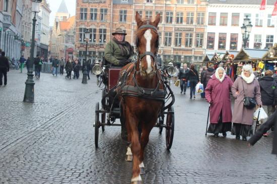 Belgium_bruges_horse