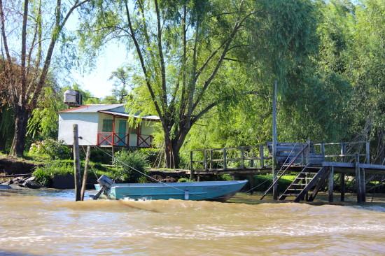 tigre_argentina_river