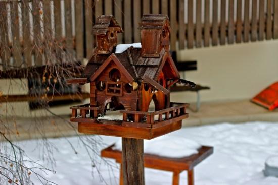 birdhouse in canazei