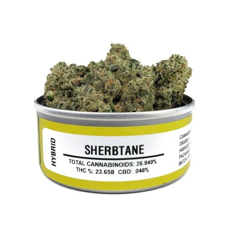 Buy Sherbtane Space Monkey | Best Bud Cans Online |