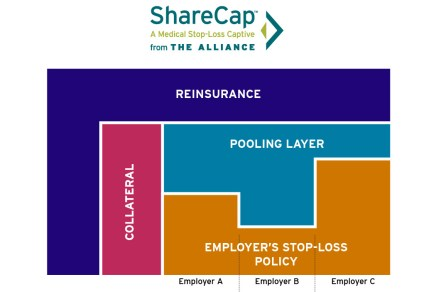 sharecap captive diagram