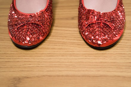 Our Ruby Slippers: The Power of Alliance Membership