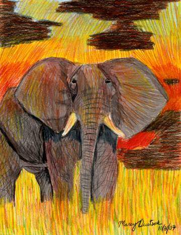 Marcy Deutsch Elephant