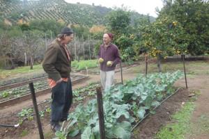 Charlie's Organic Self-Sustainable Farm