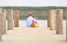 Boy and Dog empathy