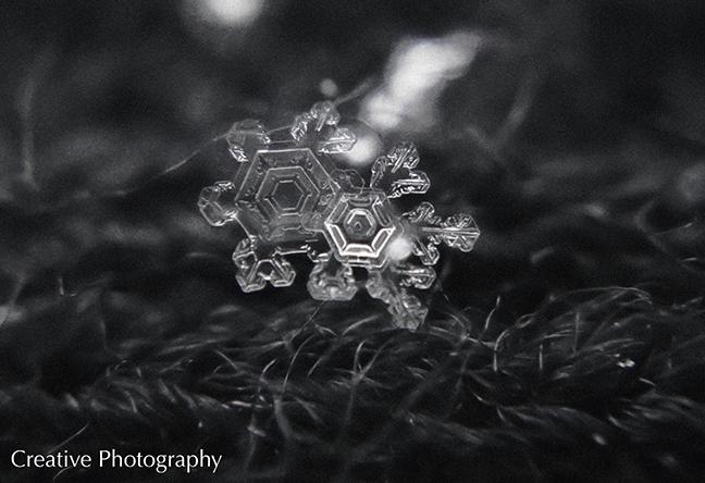 Masha Gregory Hexagon Snowflake