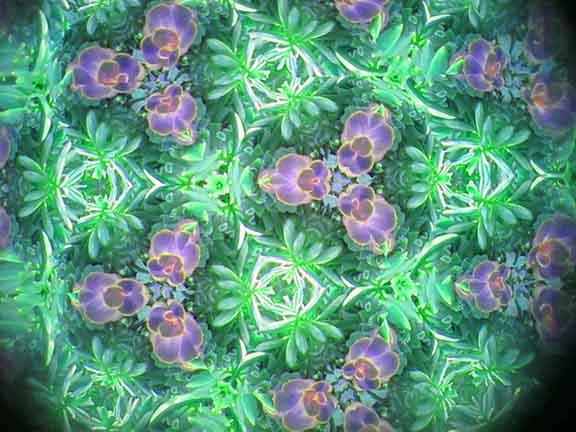 "Malcolm Wang ""Kaleidoscope 10"""