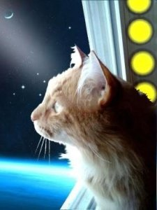 Po in Space