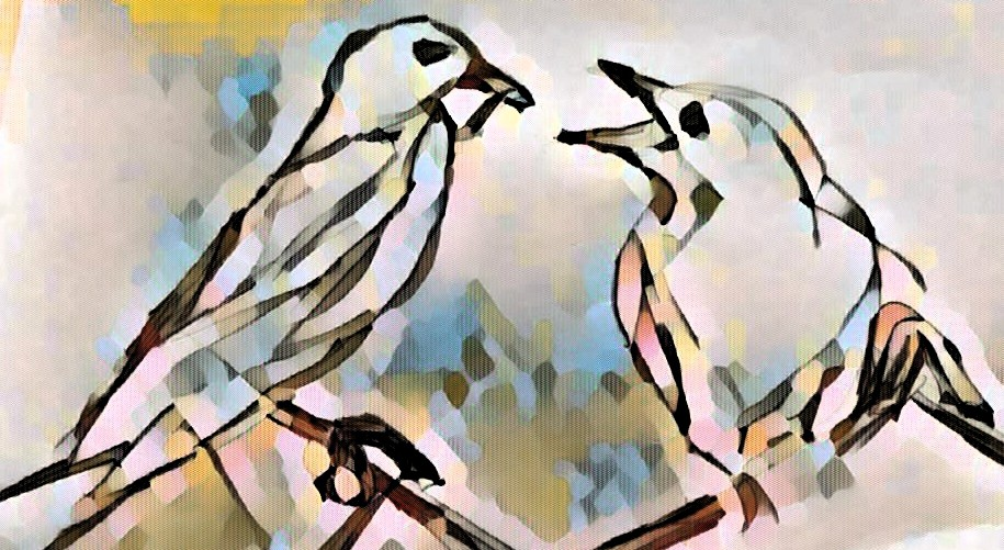 2 Birds 2
