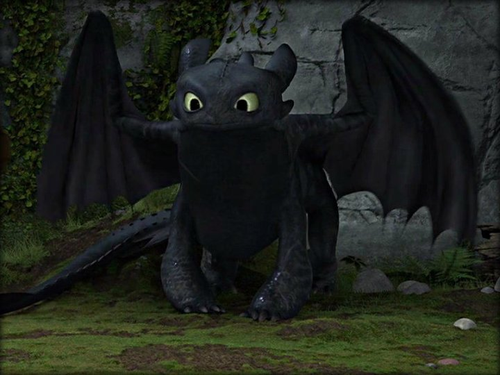 -Toothless-how-to-train-your-dragon-32987235-800-600