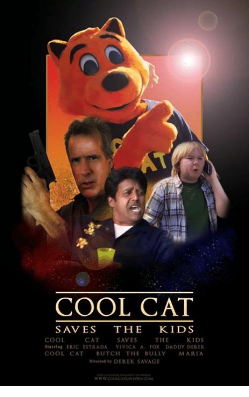 cool cat 101