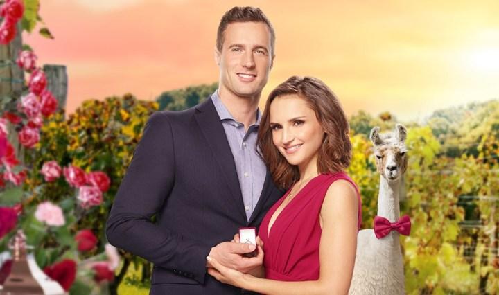 Valentine in the Vineyard