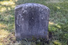Edwin Brown's grave is rather basic compared to his family's