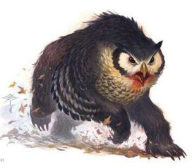 owlbear-three