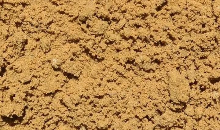 The Sand Day Thread