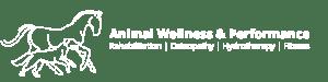 Animal wellness and performance clinic