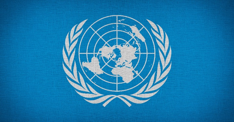 An image of the UN logo.