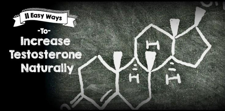 increase testosterone naturally 11