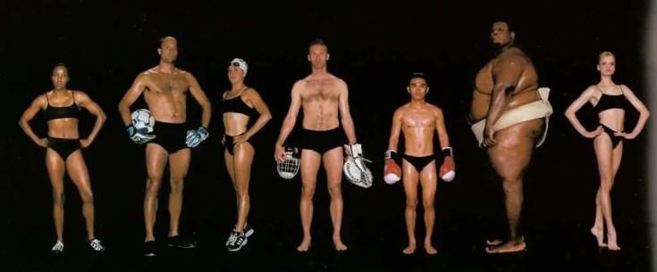 fitness body types