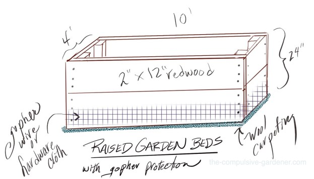 How to build a raised garden bed with gopher protection for vegetable gardening | Dealing with gophers.