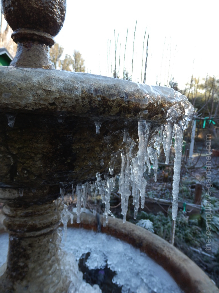 Garden fountain with ice