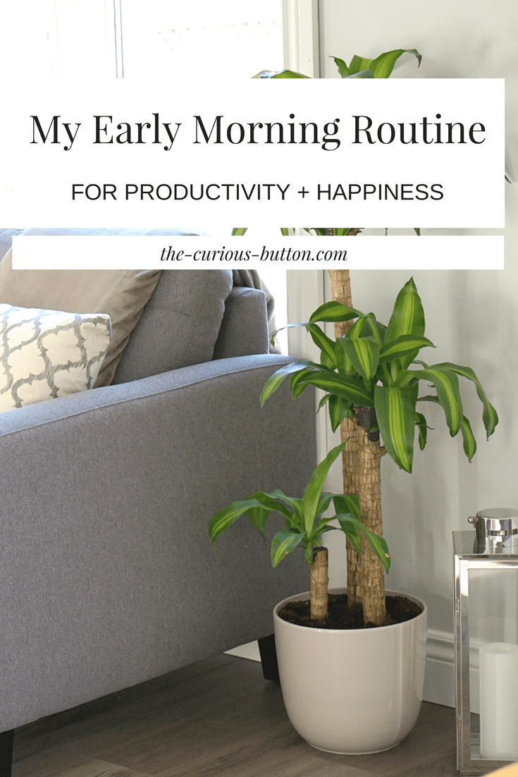Early Morning Routine for Productivity and Happiness | The Curious Button