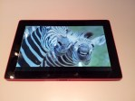 "Sharp Shows Off a 10"" Educational Tablet e-Reading Hardware"