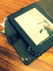My Dog Ate My eReader humor