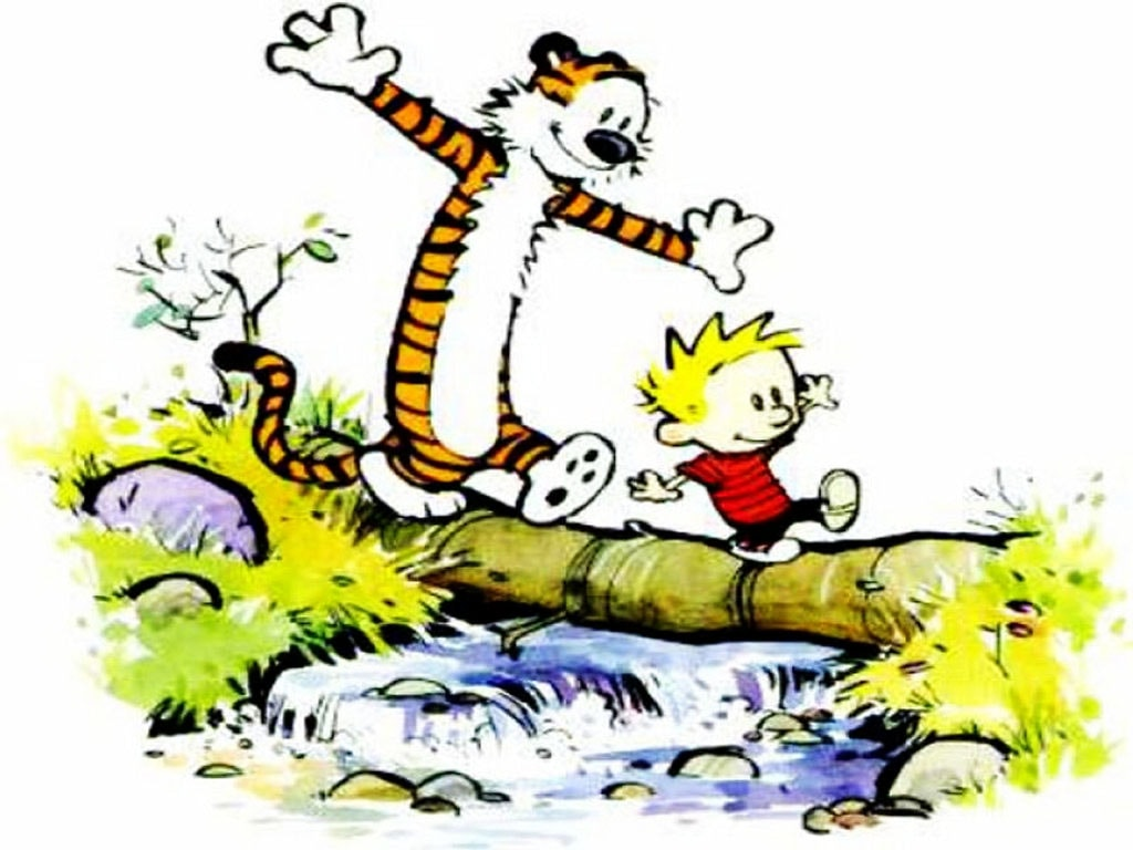 Why You Should Read Calvin And Hobbes The Storyteller