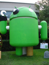 google android statue pirate